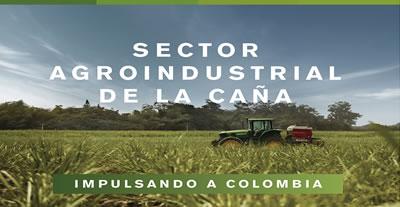 El Sector Agroindustrial de la Caña impulsa a Colombia