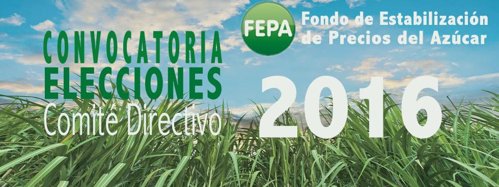 Convocatoria Elecciones Comité Directivo FEPA