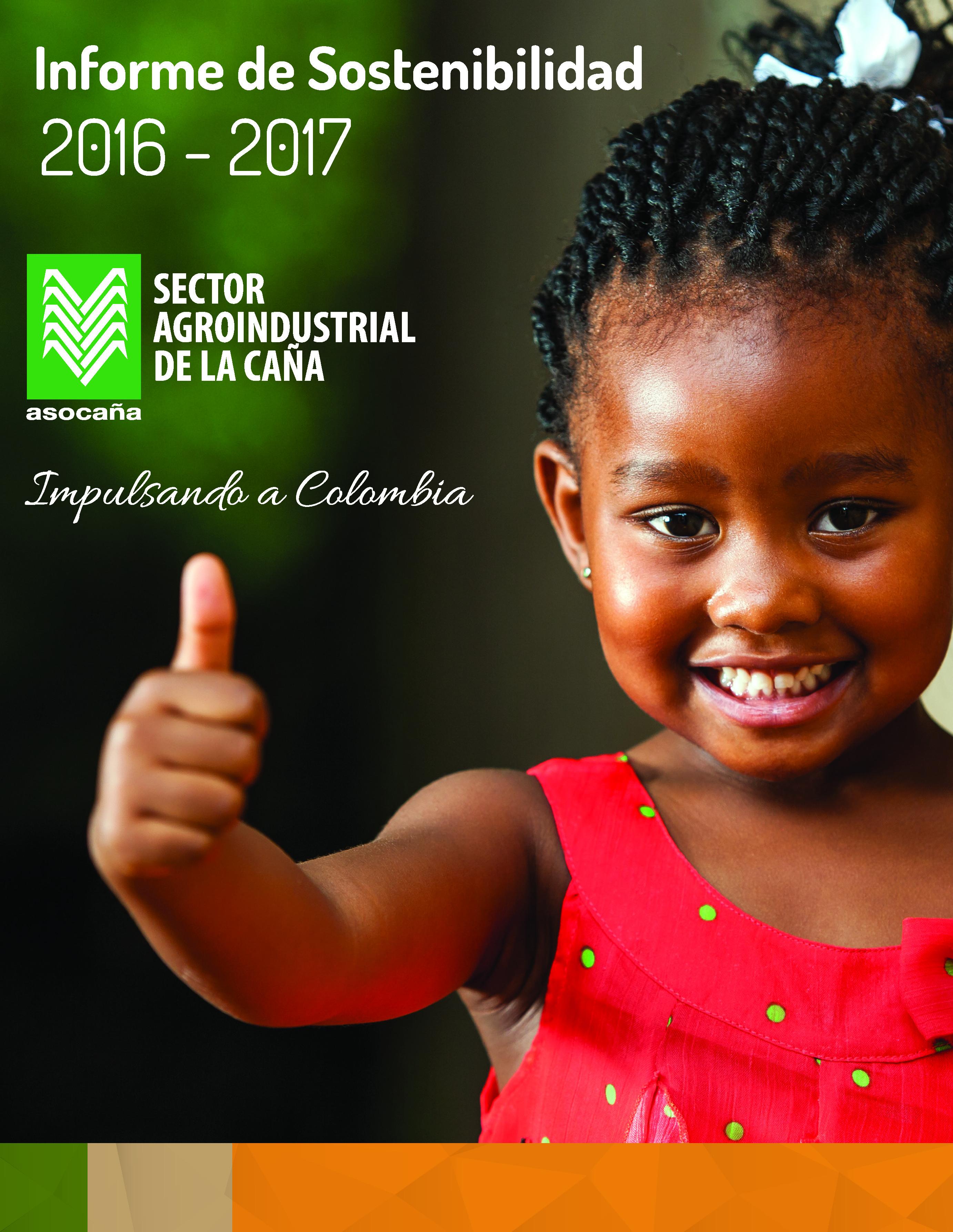Informe de Sostenibilidad 2016 - 2017